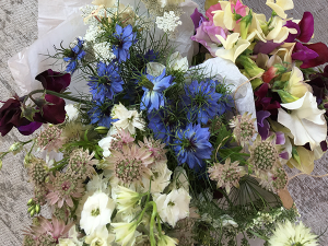 cornflowers, eryngium, geums